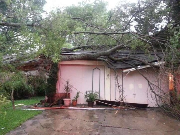 Storms Saturday morning knocked down a tree onto Samantha Slovak's home in Ennis.