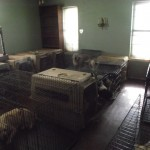 Dogs are penned in small cages without water or food in the Maximum K-9 facility in Waxahachie, TX.